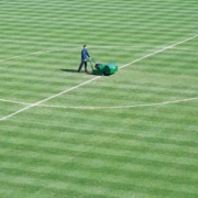 Ransomes-Mastiff-Working--on-football-pitch-OUT-600x600