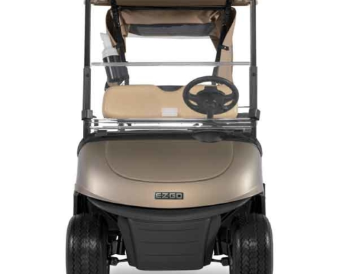 EZGO-Next-Generation-RXV-Almond-Front