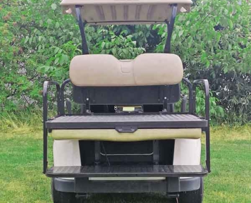 Gebrauchtes-Golfcart-EZGO-RXV-weiss-rückansicht