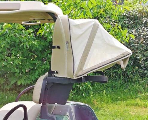 Gebrauchte-Golfcarts-RXV-Elektro-grün-Cabana