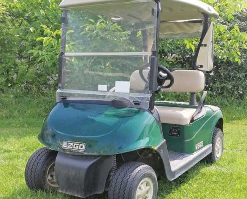 Gebrauchte-Golfcarts-RXV-Elektro2-grün-links-Cabana1