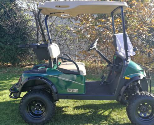 ezgo-sektionshintergrund-gebrauchte-golfcarts