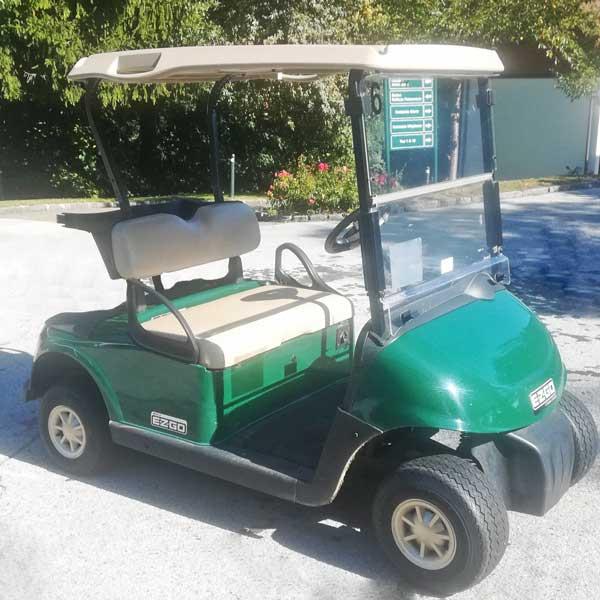 Gebrauchte-Golfcarts-EZGO-RXV-grün-2016-side-right-600x600