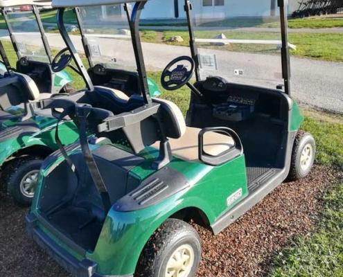Gebrauchte-Golfcarts-EZGO-RXV-grün-backside-600x600