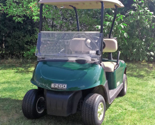 golfcart-gebraucht-ezgo-rxv-nr1